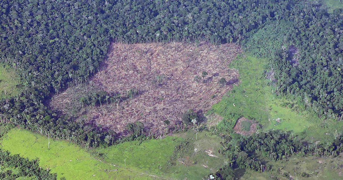 Los ocho retos ambientales de Colombia para el 2018